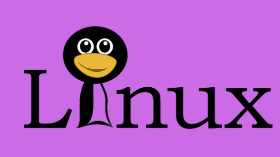 How to force shutdown of Linux