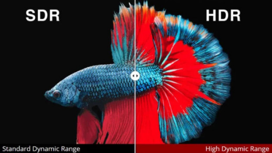 What is the difference between Dolby Vision, HDR10, HDR10 +, HLG and Advanced HDR?