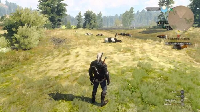 Cows The Witcher 3