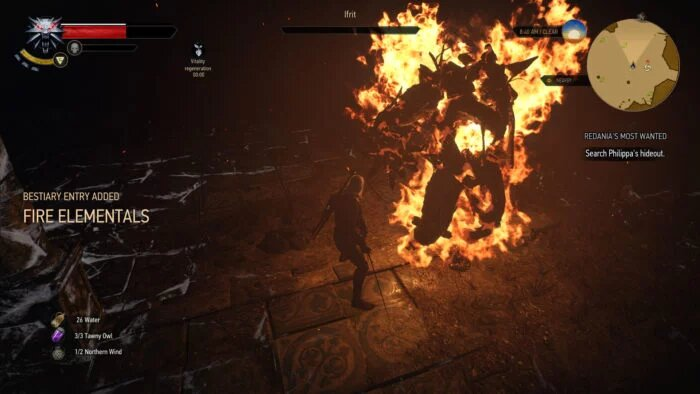the witcher 3 ifrit fight
